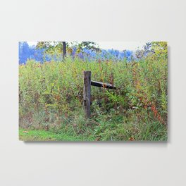The Disappointment Metal Print