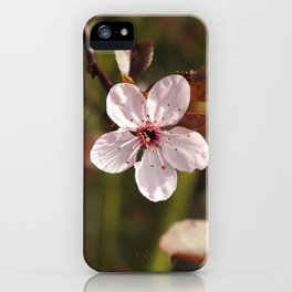 Beauty In Solitude iPhone Case