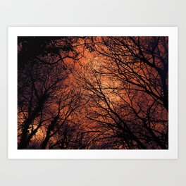 The Enchanted Forest 2 Art Print