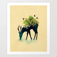 deer Art Prints featuring Watering (A Life Into Itself) by Picomodi