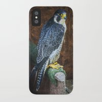 falcon iPhone & iPod Cases featuring Falcon by Veronika