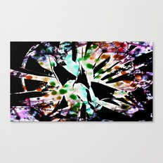 Tie dyed Magpi Canvas Print