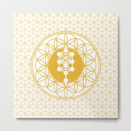 The Seed, Flower and Tree of Life sacred geometry Metal Print