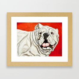 Uga the Bulldog Painting - Red Background Framed Art Print