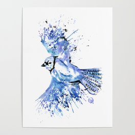 Blue Jay - Colorful Watercolor Bird Painting - Bluetiful Poster