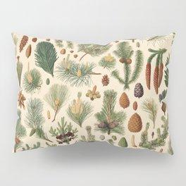 Vintage Pinecones Designs Collection Pillow Sham