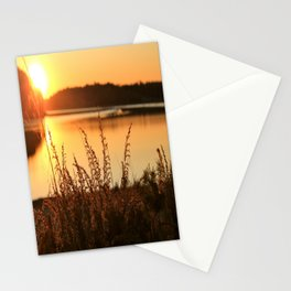 Summer Daize Stationery Cards