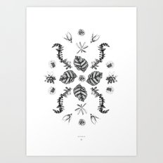 Botanica Composition  Art Print