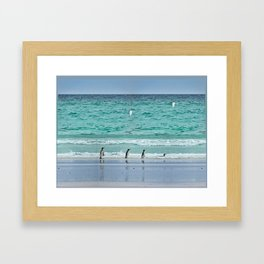 Falkland Island Seascape with Penguins Framed Art Print