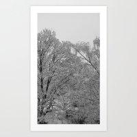 Wintery day Art Print