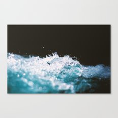 Soaked II Canvas Print