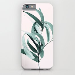 Eucalyptus II - Australian gum tree iPhone Case
