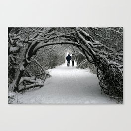 Witch in the Wood Canvas Print