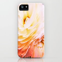petite grenouille iPhone Case