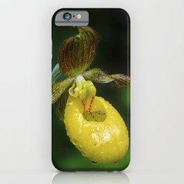 Lady Slipper 2 iPhone Case