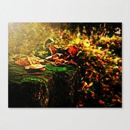 Richness of Autumn.  Canvas Print