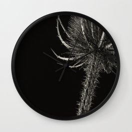 Project 'Decay'. Spear Thistle (Cirsium vulgare) Wall Clock