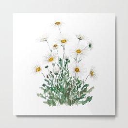 white Margaret daisy watercolor Metal Print