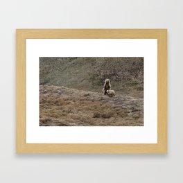 Mamma Bear Framed Art Print