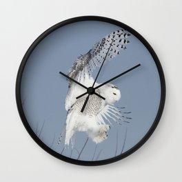 Air Acrobat Wall Clock