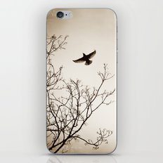 Bird Flying Tree Photography, Brown Nature Branches, Birds Fly Trees iPhone & iPod Skin