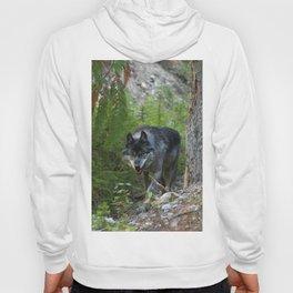 Stalking - Alpha Male Grey Wolf Hoody