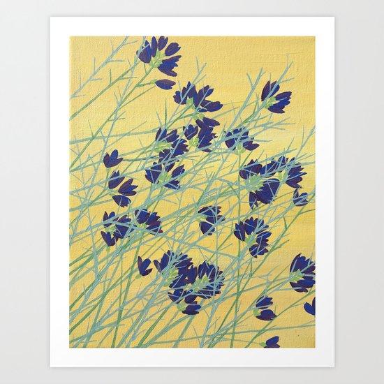 Smoke Tree Bloom Art Print