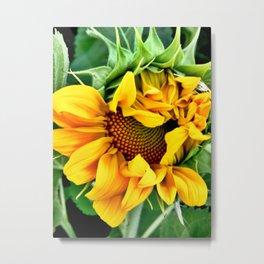 Partial Bloom Metal Print