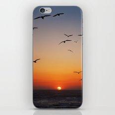 Malibu Sunset iPhone & iPod Skin