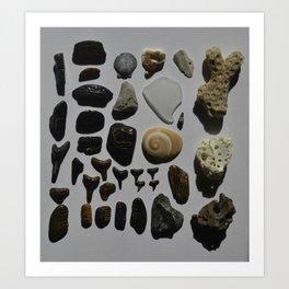 Beach Day Fossils Art Print