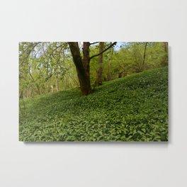 Floor of Green Metal Print