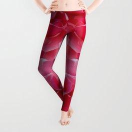 Rose Divine Leggings