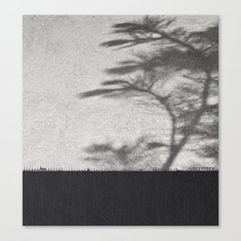 Grey Tree Branch Shadows and Texture Canvas Print