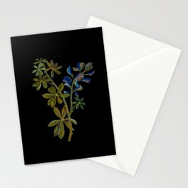 Lupinus Varius Mary Delany Delicate Paper Flower Collage Black Background Floral Botanical Stationery Cards