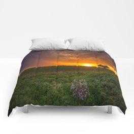 Autumn Sunset - Flowers and Tree on Oklahoma Plains Comforters