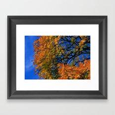 The Burning Tree Framed Art Print