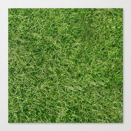 Grass Textures Turf Canvas Print