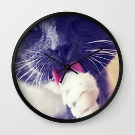 Grooming Cat Wall Clock