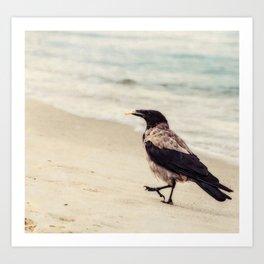 Feed The Crow Art Print
