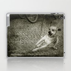 Dog play Laptop & iPad Skin