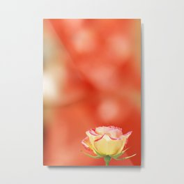 LITTLE YELLOW ROSE Metal Print