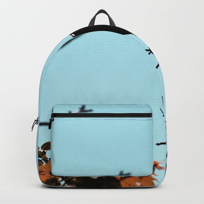 Manifest Backpack
