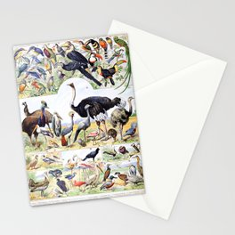Adolphe Millot - Oiseaux D - French vintage poster Stationery Cards
