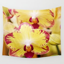 Close up Orchid #8 Wall Tapestry