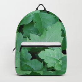 Settled Backpack