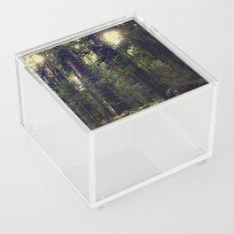 Sunrays in the Redwoods Acrylic Box