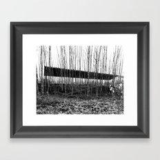 Forest Illusion Framed Art Print