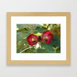 Bee, Part 4 Framed Art Print