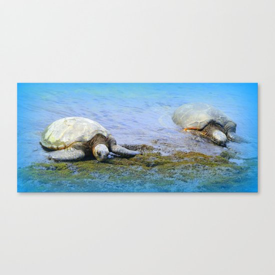 Giant Sea Turtle Canvas Print