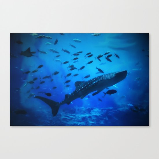 A Whale of a Teacher Canvas Print